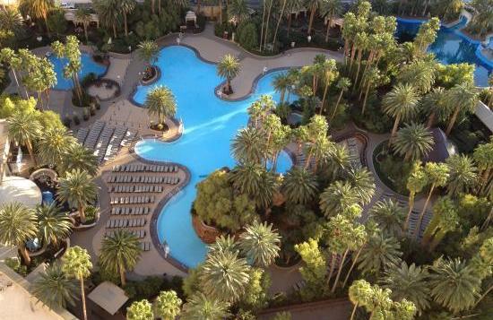 aerial view pool