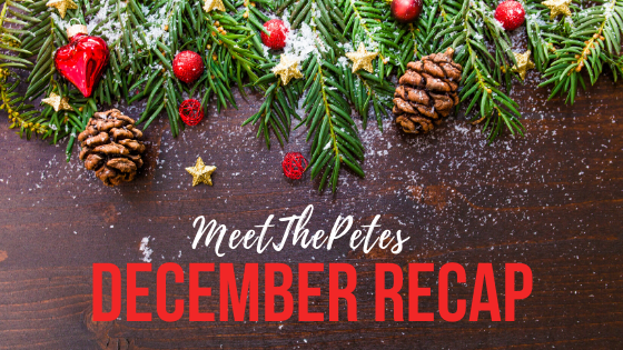 Dec Recap - Blog Banner