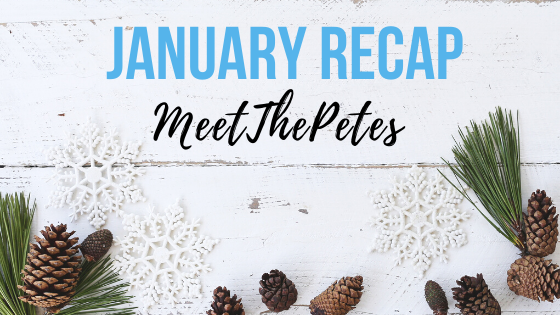 Jan Recap - Blog Banner